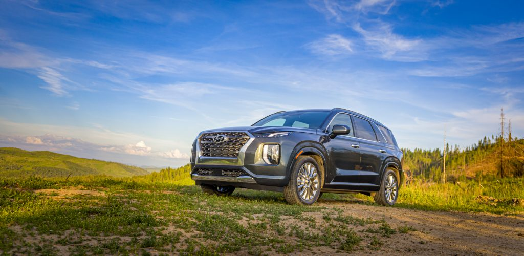 a Hyundai Palisade parked in a scenic grassy area