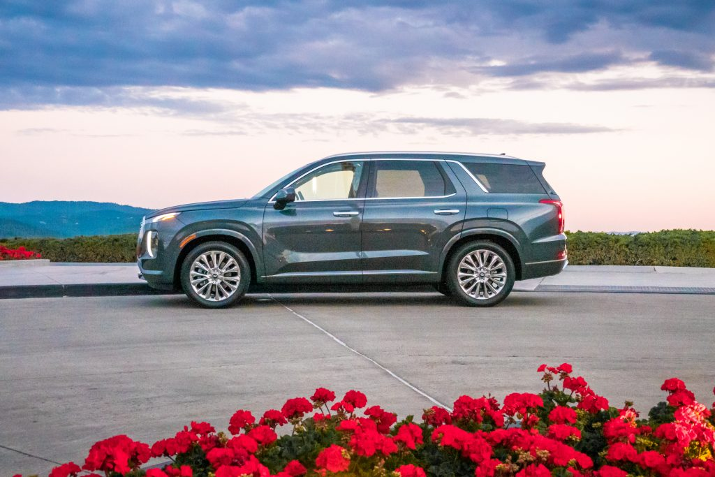 A blue 2020 Hyundai Palisade parked near a bed of red roses.