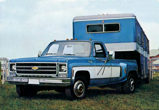 1973 Chevy Single Cab Dually-GM