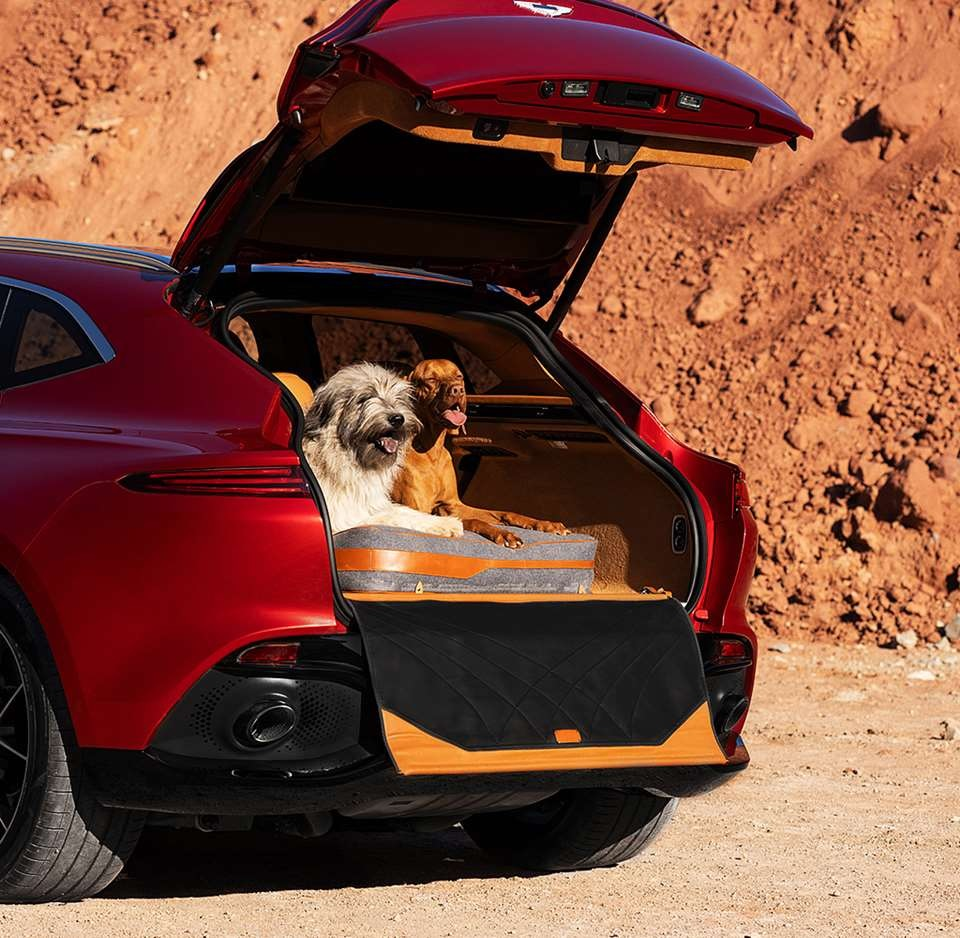 2021 Aston Martin DBX with Dog Pack
