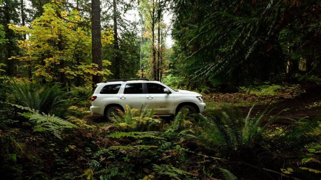 2020 Toyota Sequoia TRD Pro side