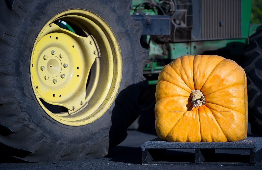 A square pumpkin next to a round wheel