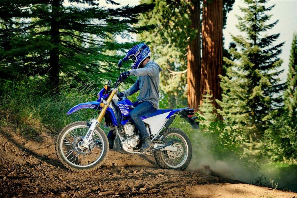2020 Yamaha WR250R