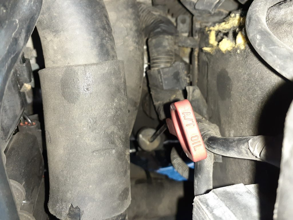 Automatic Transmission Fluid Dipstick
