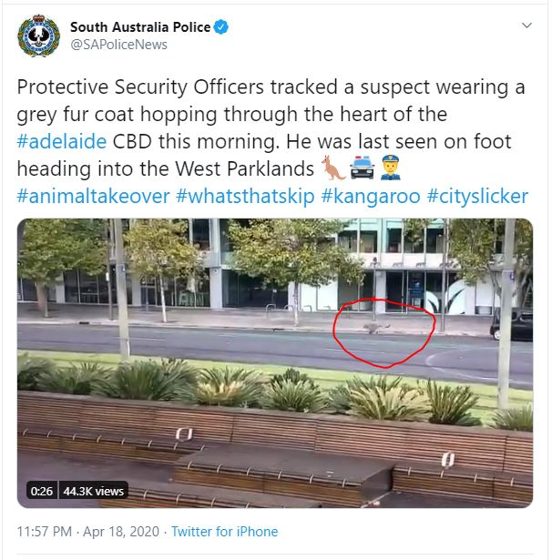 South Australia Police account tweet