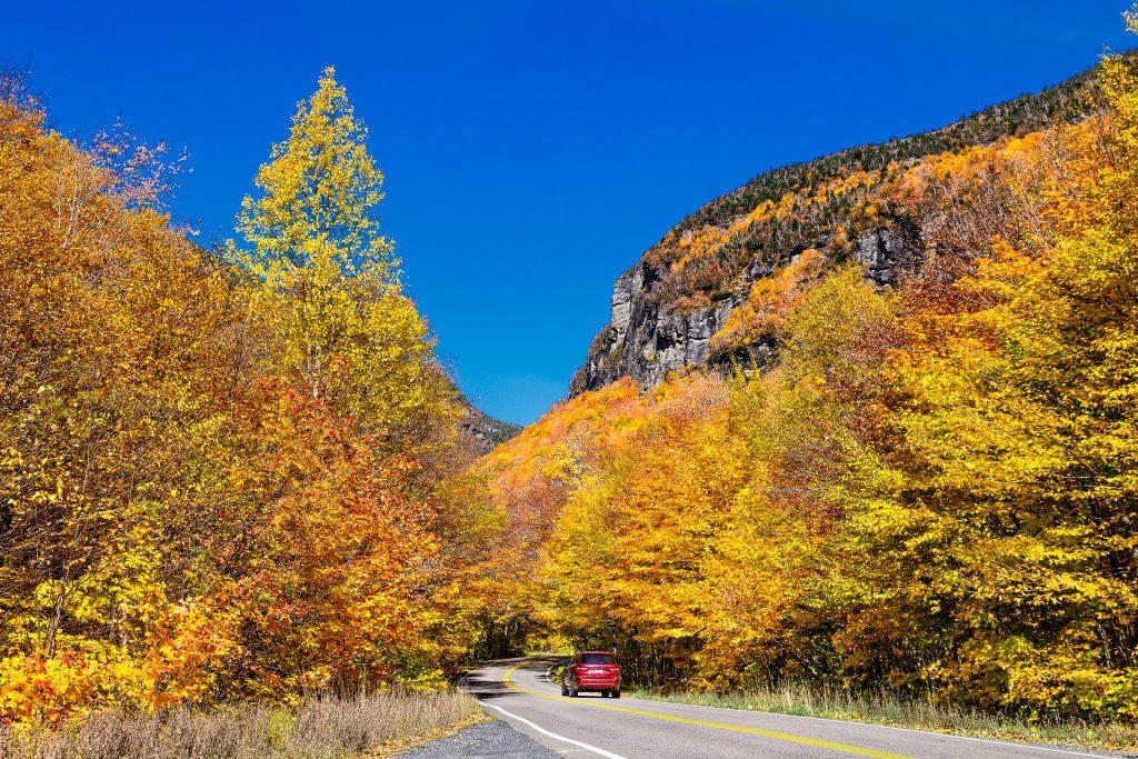 scenic autumn road trip