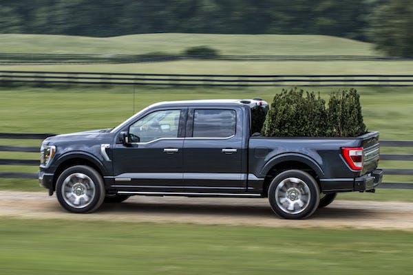 2021 Ford F150 hauling bushes