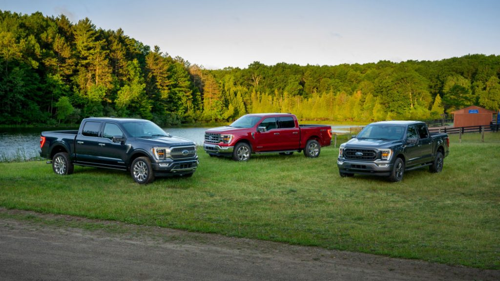 2021 Ford F-150 models parked in a field