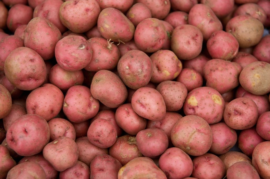 young red potatoes