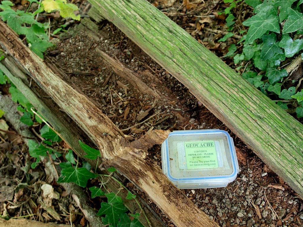 Geocache box hidden in a old log on the Chettle Estate, Dorset, UK. (Photo By: Education Images/Universal Images Group via Getty Images