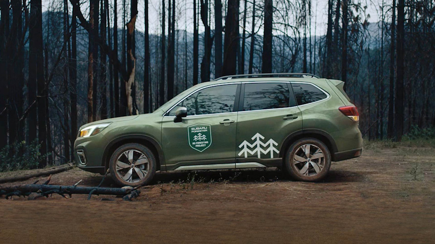 a designated Subaru Forester re-foresting vehicle with special forestry badging in the woods