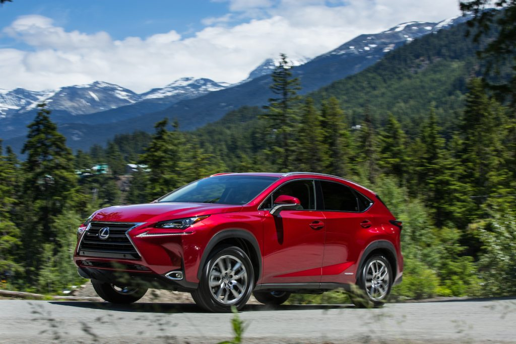 2020 Lexus NX 300h parked near the mountains and lots of trees