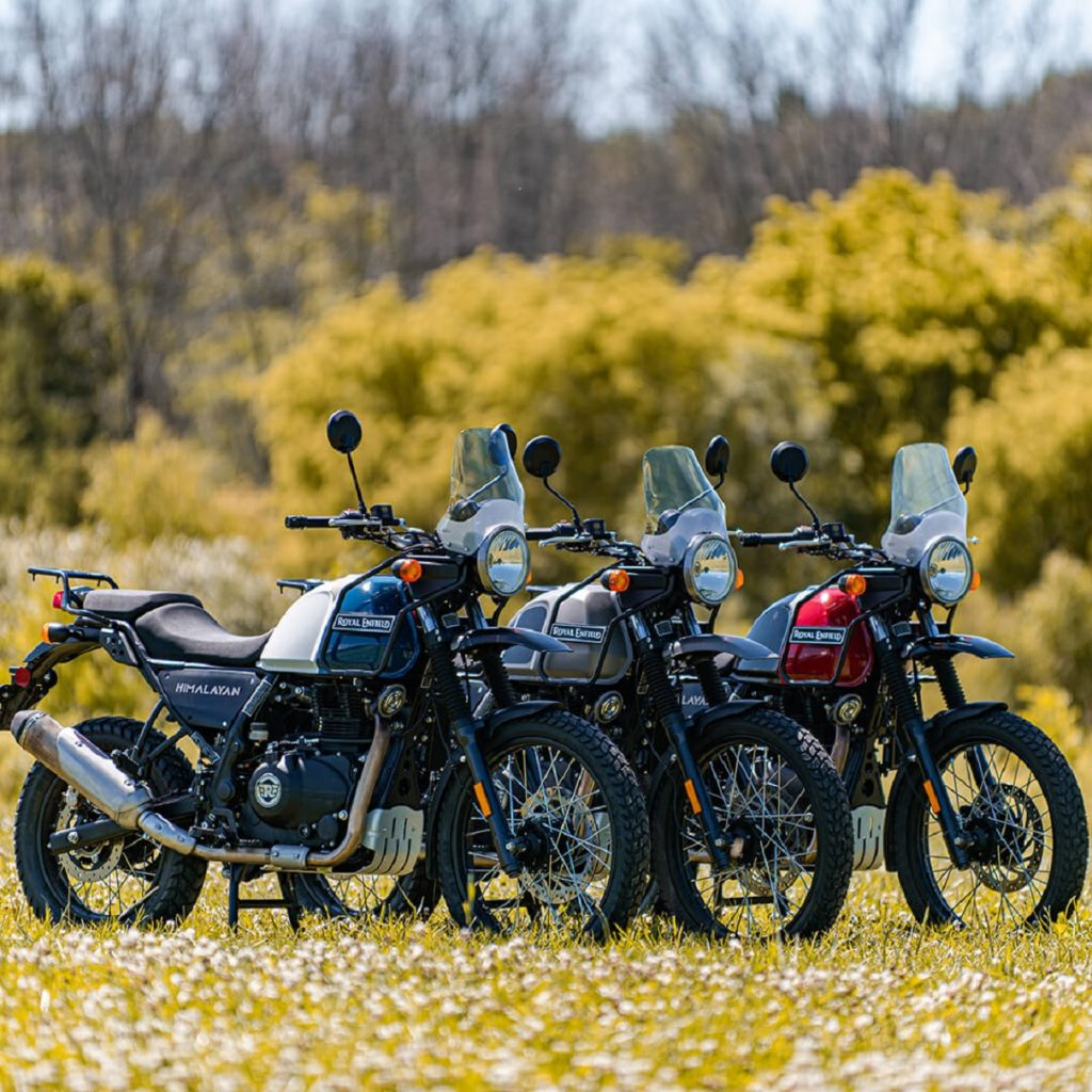 Several color variants of the 2021 Royal Enfield Himalayan