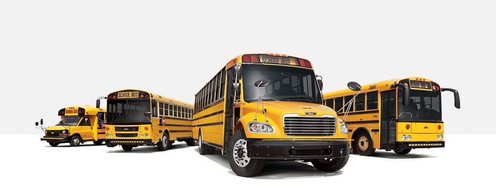 Several different styles of yellow buses built by the Thomas Built Buses Company
