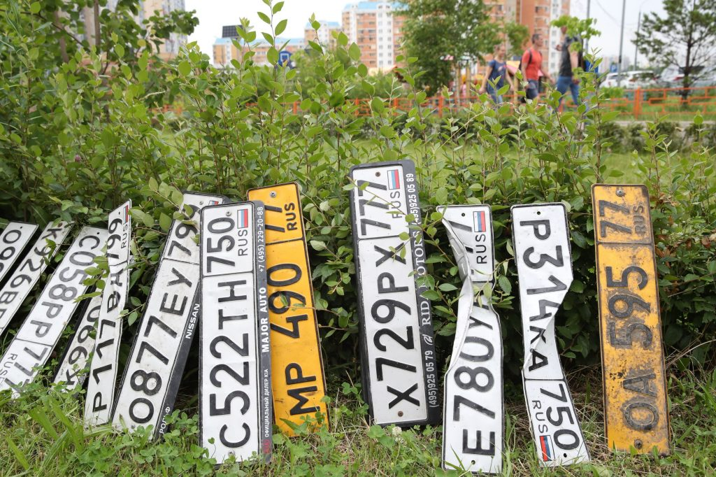 An assortment of Russian license plates with different numbers by a bush