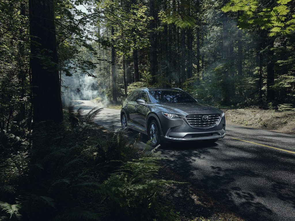 2021 Mazda CX-9 on a road through the woods