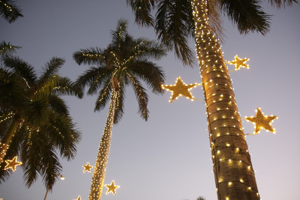 RV Holiday Decor Ideas: Palm Trees wrapped in Christmas lights
