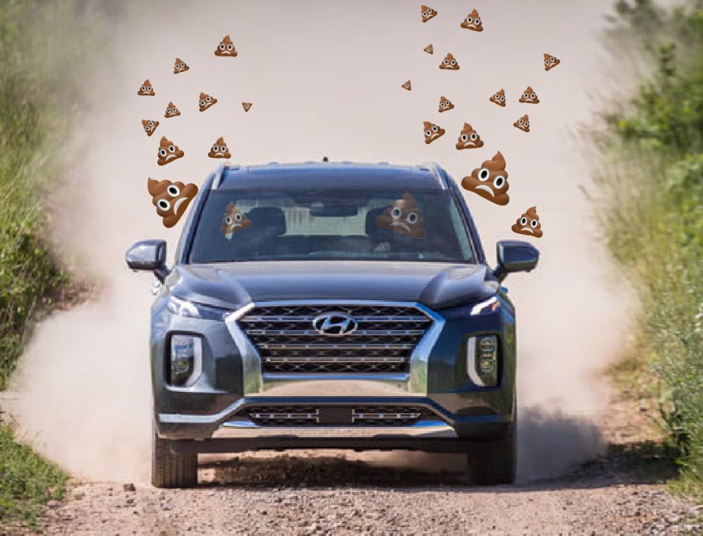 2020 Hyundai Palisade Odor