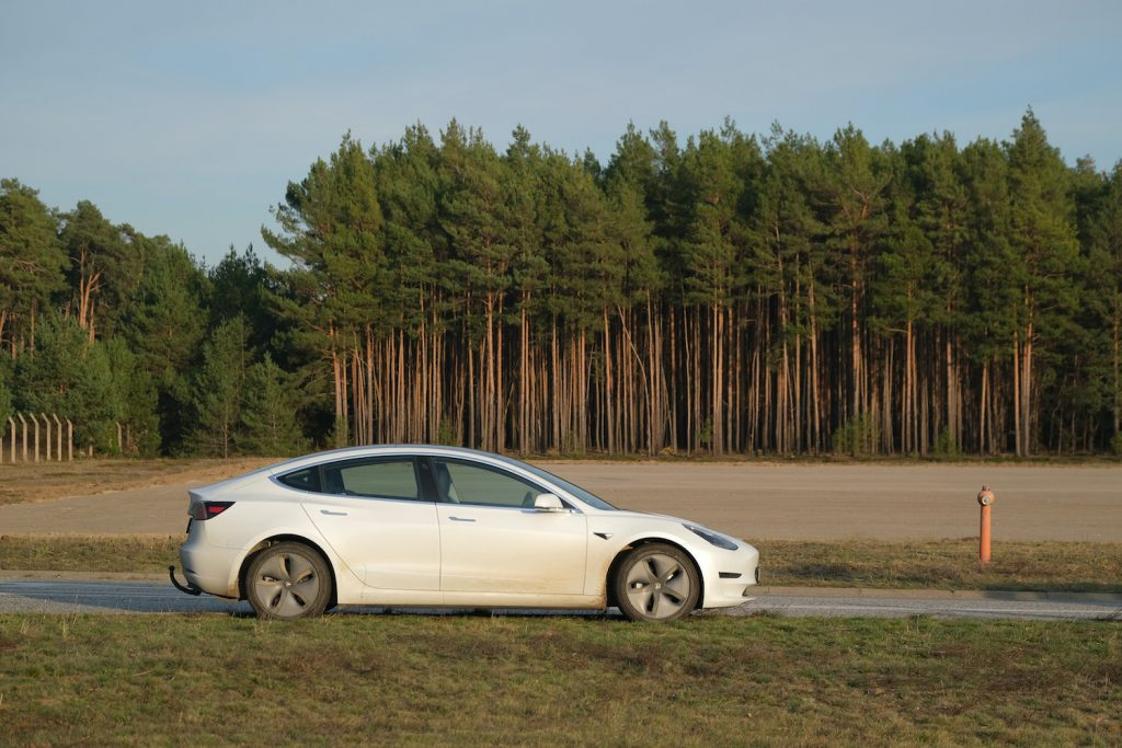 2019 Tesla Model S parked near trees