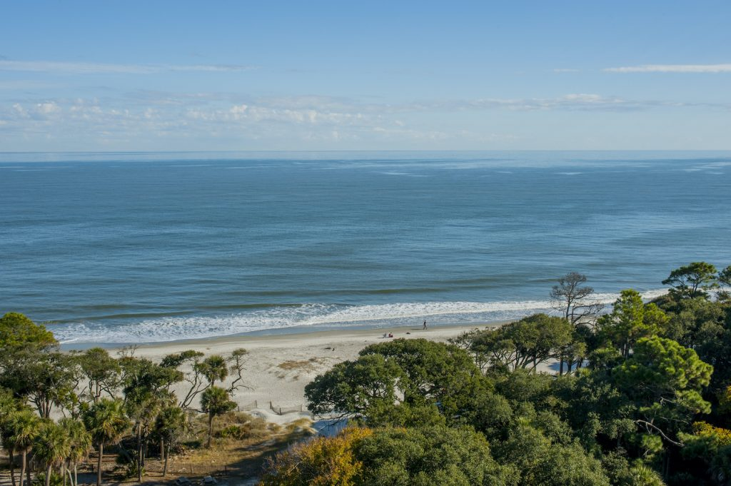 View from the Hunting Island Lighthouse, located in Hunting Island State Park on Hunting Island near Beaufort, South Carolina, USA.
