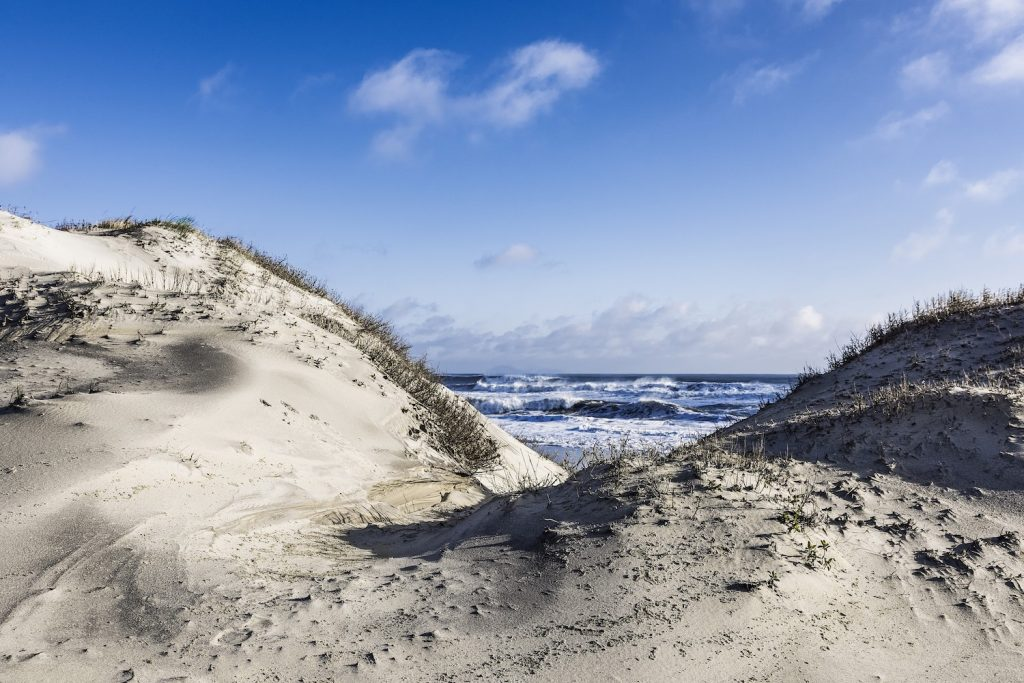 Dunes and beach in the Outer Banks of North Carolina.