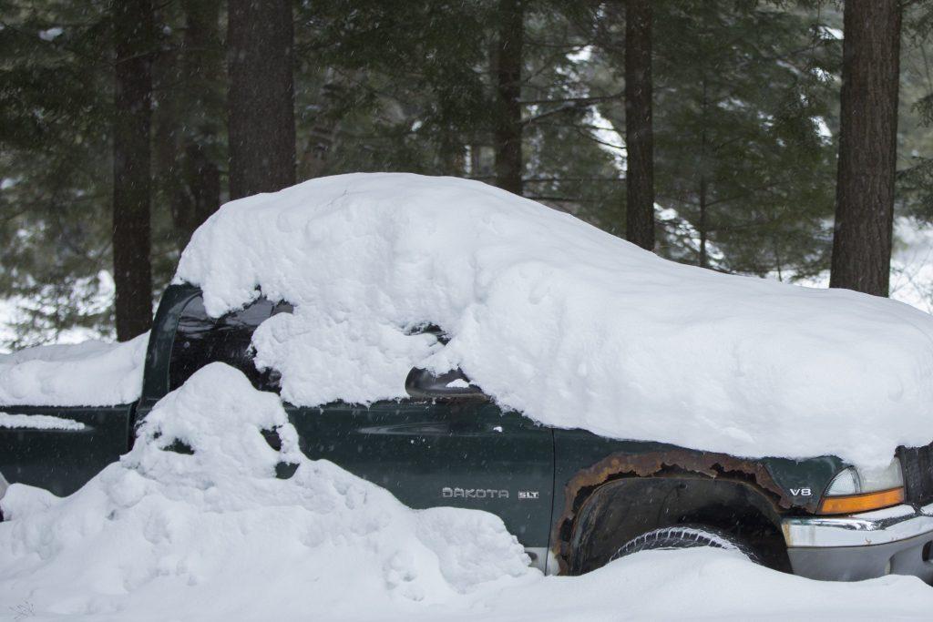 A green Dodge Dakota pickup truck under the snow