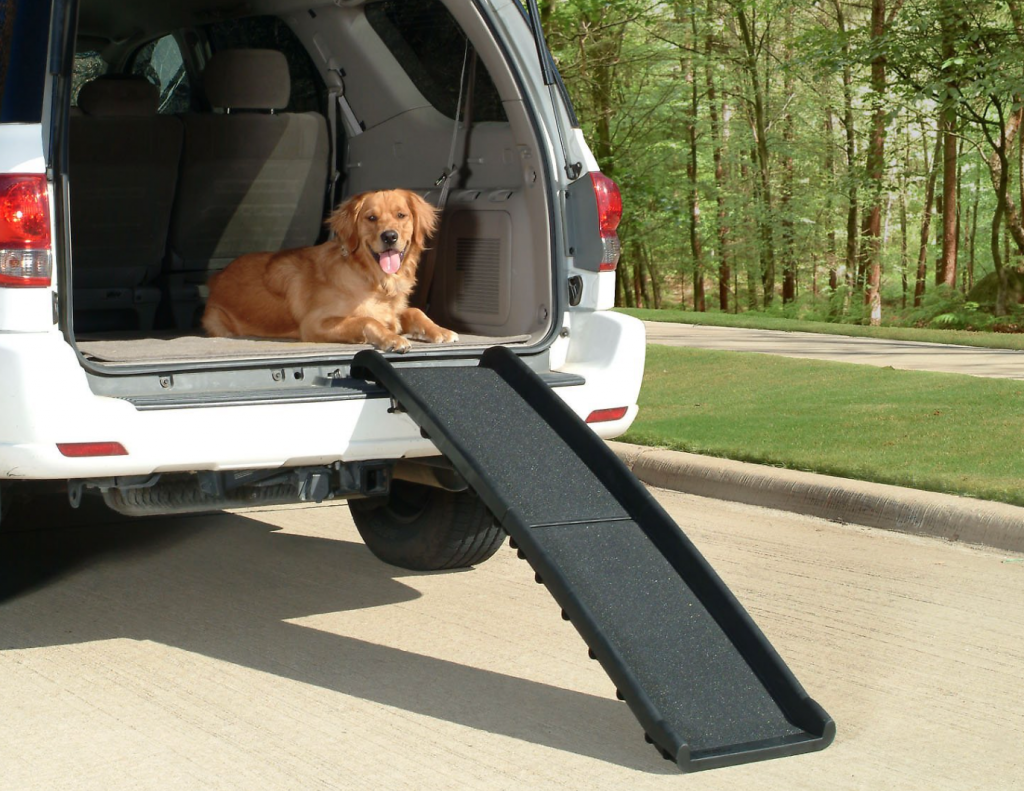 Foldable dog ramp   Chewy