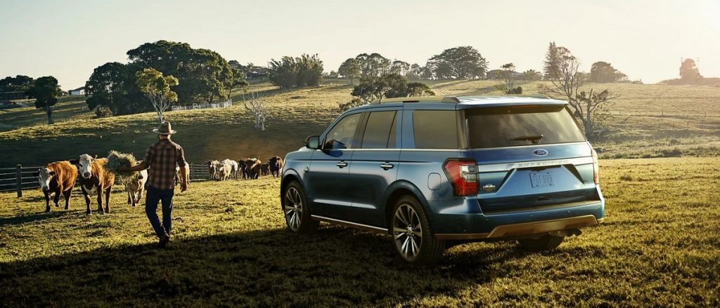 A 2021 Ford Expedition sits on farmland with cows and a farmer in the background.