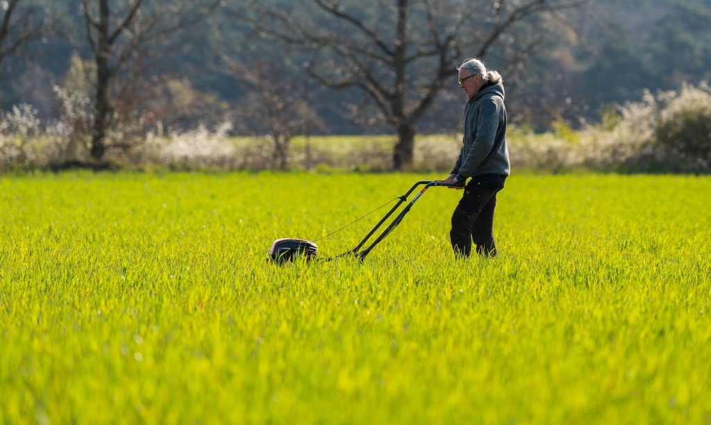 A person showing using a lawn mower to mow a big yard