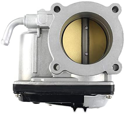 A large throttle body