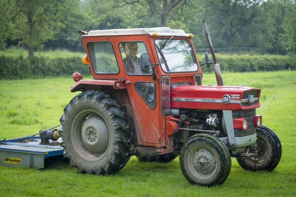 A red Massey Ferguson tractor in a grassy field.