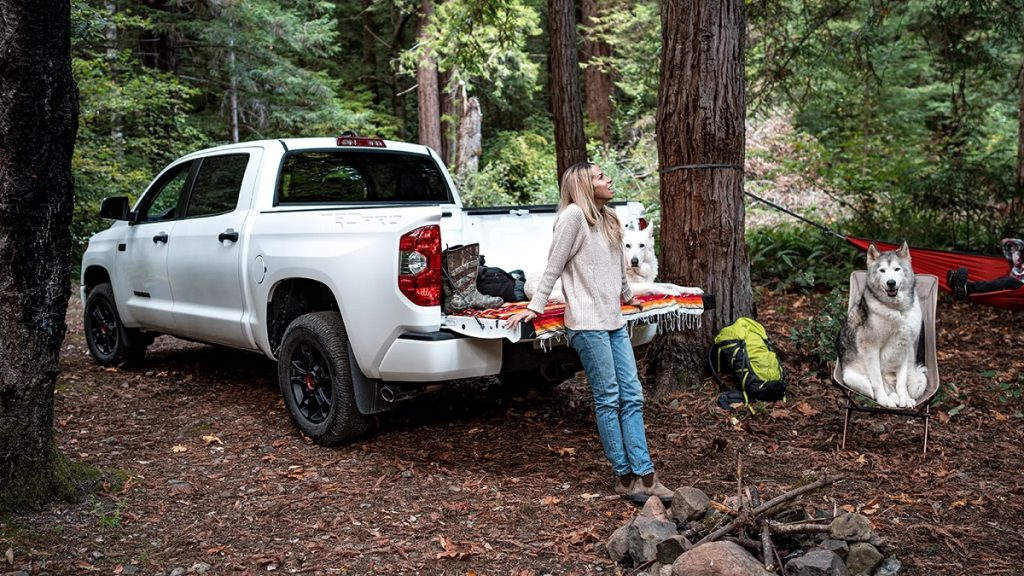 A woman and two dogs hang out with a 2021 Toyota Tundra at a campsite.