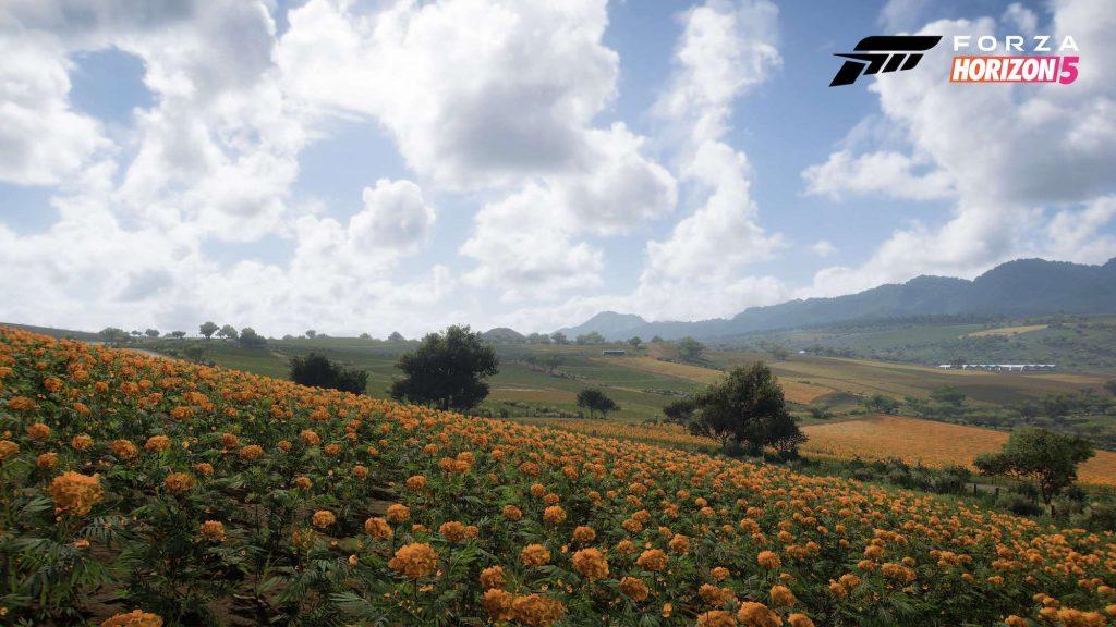 A screenshot of 'Forza Horizon 5' Biome Farmland