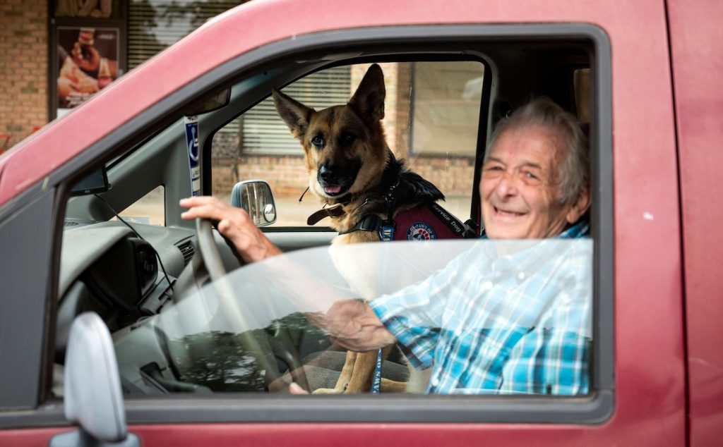 An elderly veteran behind the wheel of a red pickup truck with a service dog beside him, USAA is one of the best car insurance companies for military members