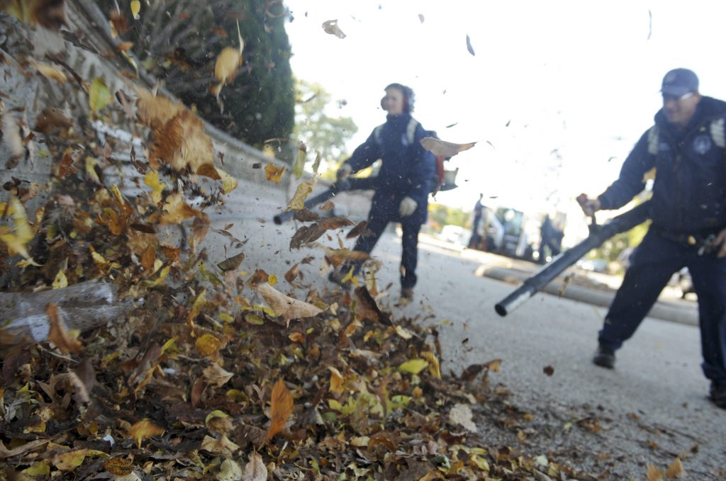 Two men use leaf blowers on a pile of leaves