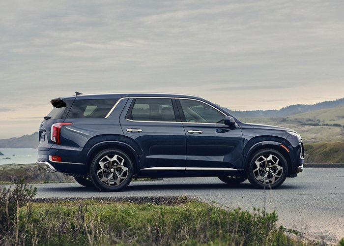 A dark blue 2021 Hyundai Palisade parked in front of the ocean.