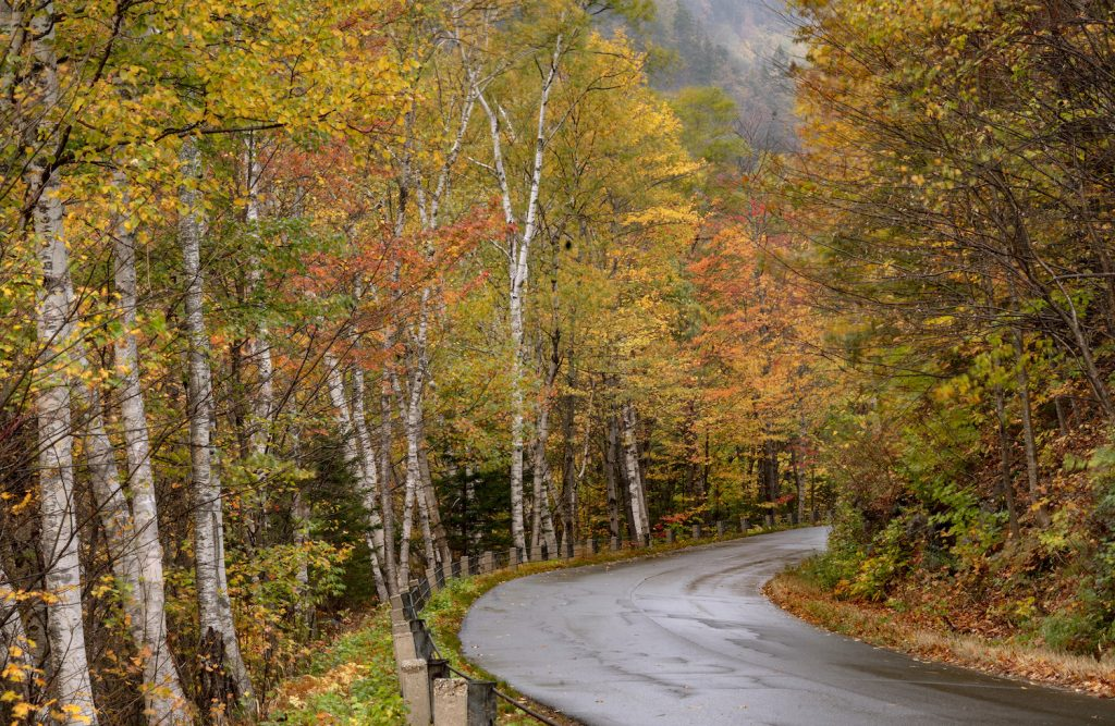 Fall foliage in Evans Notch, one of the best scenic drives for leaf-peeping in the northeast