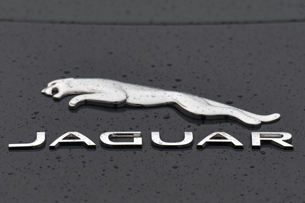 A chrome Jaguar logo on a black car with water drops.