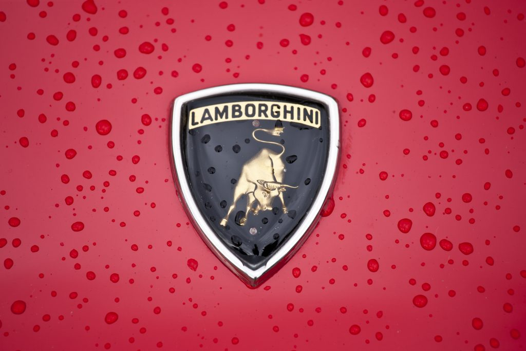 an upclose shot at a real Lamborghini badge as opposed to the Lamborghini Aventador replica built from a 2005 Pontiac GTO