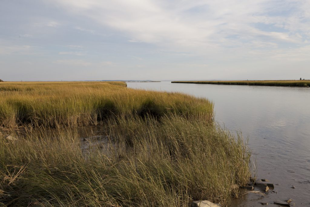 Looking out over the marshes in Long Island Sound near Westport, Connecticut, close to Hammonasset State Park