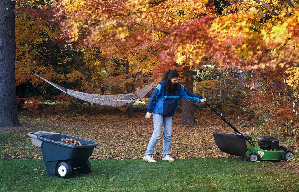 Woman cutting the lawn in autumn