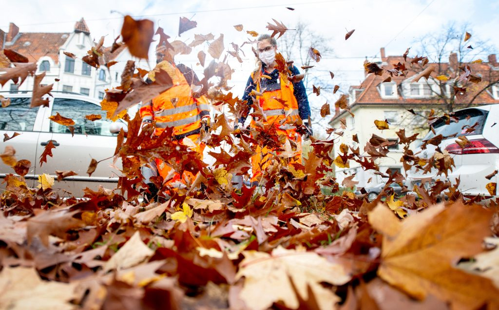 two people using leaf blowers to clear dead leaves and not to clean their cars
