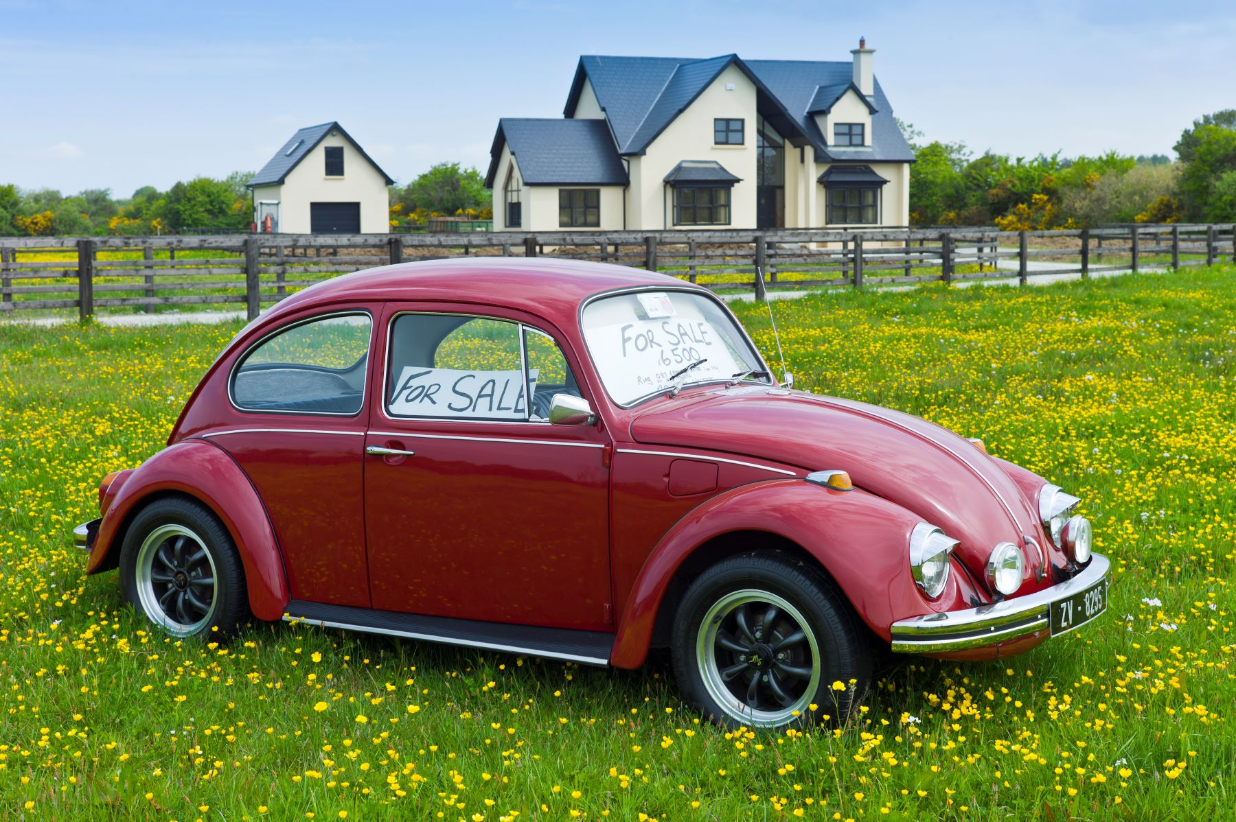 A red Volkswagen Beetle with a 'For Sale' sign for under $7,000 on its windshield parked in a field of flowers in Taghmon, Ireland