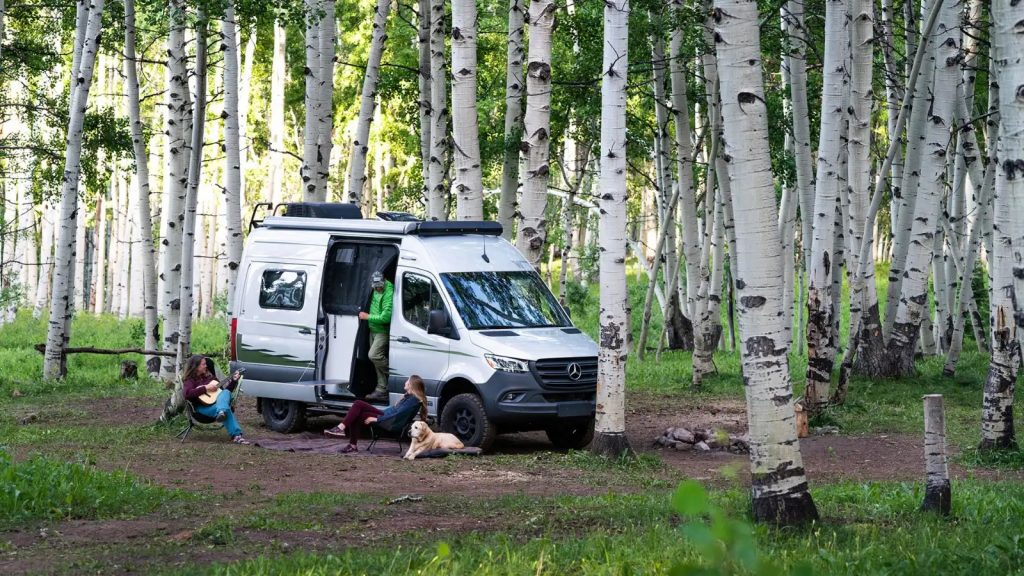 The Winnebago Revel is a lot of camper van in a small package. This small camper van is parked in a birch grove.