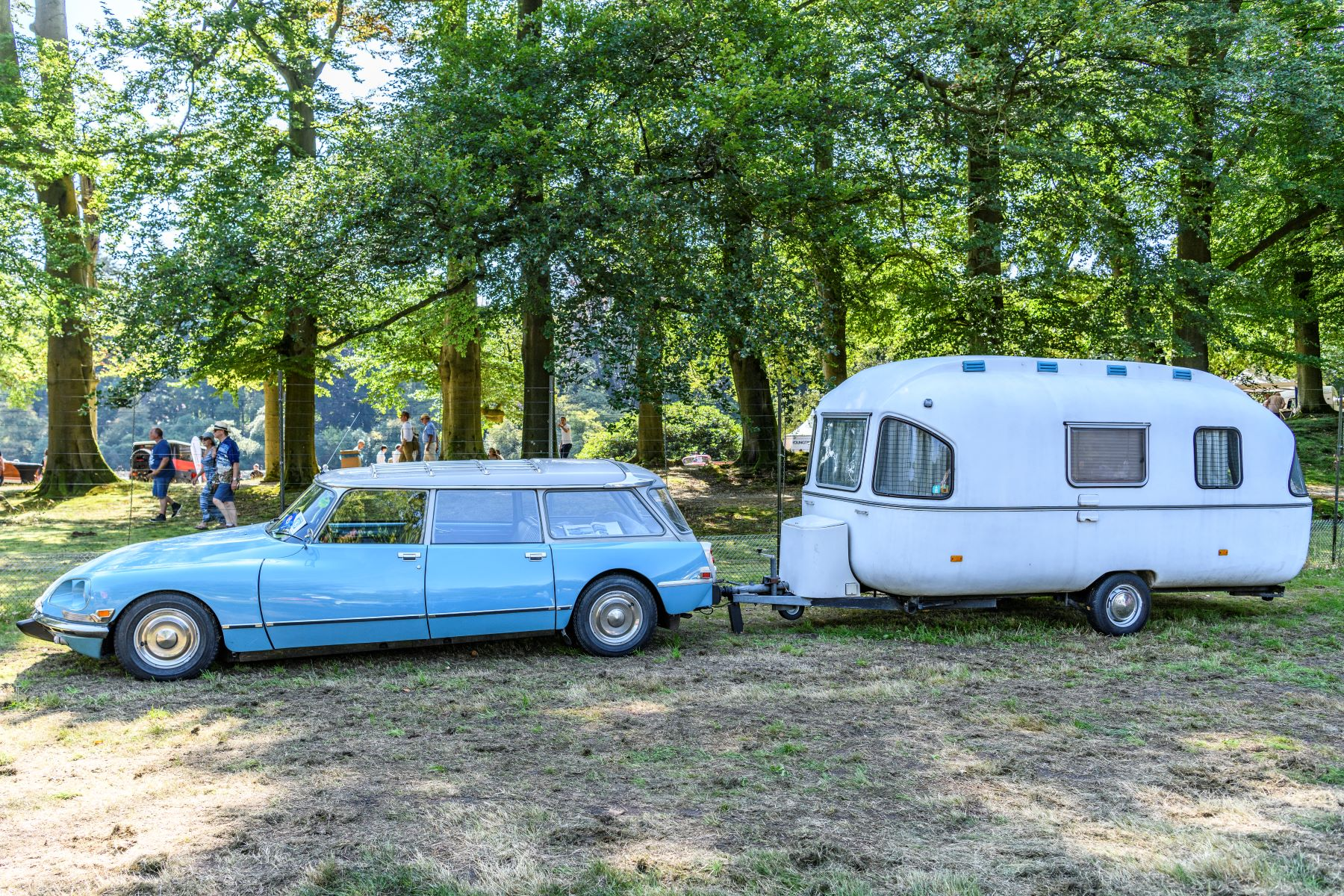 A station wagon towing an RV camper in a forest campground